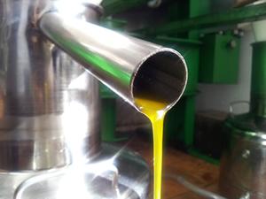 Decantador de aceite de oliva casero